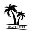 black palm tree silhouette vector image