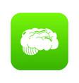 brain icon green vector image