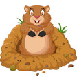cartoon groundhog looking out of hole vector image vector image