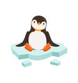 cute funny penguin character is sitting on vector image