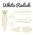 half and slice white radish vector image vector image