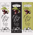 labels for extra virgin olive oil with countryside vector image