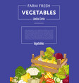organic vegetable farming banner vector image vector image
