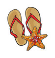 pair of flip flops and starfish symbols of beach vector image vector image
