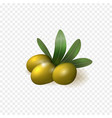 realistic green olives with leaves isolated vector image vector image