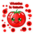 a tomato on a white backgroundpictures for vector image vector image