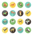 Horse icons set wild horses vector image vector image
