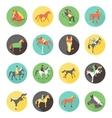 Horse icons set wild horses vector image