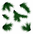 set of fir branches realistic christmas tree vector image