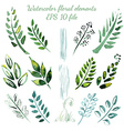 Watercolor flowers and leaves elements vector image vector image