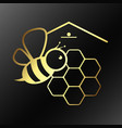 bee and honeycombs symbol vector image