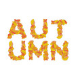 autumn lettering yellow leaves of abc autumnal vector image