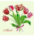 Background with bouquet of tulips2-06 vector image vector image