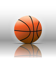 basketball isolate on white background vector image vector image