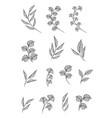 designer elements set collection greeng vector image vector image