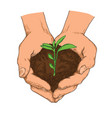 hand drawn ecology concept of plant growing vector image vector image