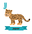 Jaguar J letter Cute children animal alphabet in vector image