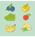 Set of hand-drawn tropic fruits vector image vector image