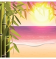 Bamboo trees and leaves on the sand beach vector image vector image
