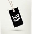 Black friday sale tag label poster vector image