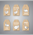 butchery shop price tags and labels vector image