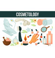 cosmetology services for beouty and health vector image vector image