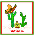 funny cactuses in sombrero with tequila colorful vector image