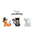 happy halloween - cats in monsters costumes vector image vector image