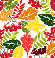 Autumn leaves seamless pattern Flat style vector image vector image
