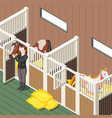 horse stable isometric background vector image vector image