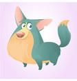 pembroke welsh corgi dog cartoon vector image vector image
