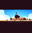 silhouette running wild animals ostriches vector image