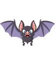 cartoon bat flying isolated on white background vector image