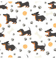 dachshund seamless pattern adorable pets funny vector image