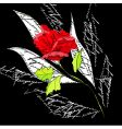 original background with red rose vector image vector image