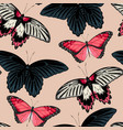 pattern with high detailed black butterfly vector image