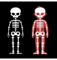 Skeletons Human Bones Set Cartoon Style vector image vector image