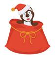 husky in christmas hat sits inside huge bag for vector image