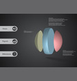 3d infographic template with ball vertically vector image
