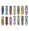 colored on skateboards vector image vector image
