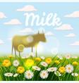 farm landscape with cows cow vector image vector image