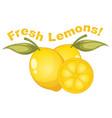 fresh lemons on white background vector image