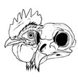 skull rooster head realistic vector image vector image