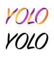yolo symbol background vector image vector image