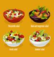 greek salad mozzarella lettuce summer dish vector image vector image
