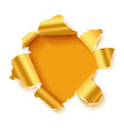 hole in white paper with gold torn sides vector image vector image