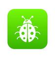 ladybug icon green vector image