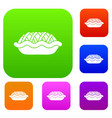 pie set collection vector image vector image