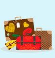 with luggage -bags and vector image vector image