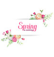 hello spring floral design with blooming flowers vector image